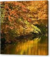 Lake And Forest In Autumn Canvas Print