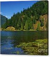 Lake Errock Canvas Print