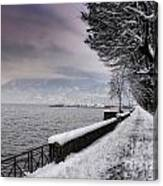 Lake Front In Winter Canvas Print