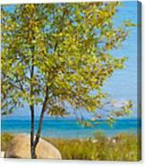 Lake Huron Seashore Canvas Print