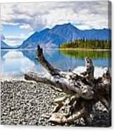 Lake Kathleen In Kluane National Park Canvas Print