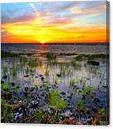 Lake Okeechobee Sunset Canvas Print