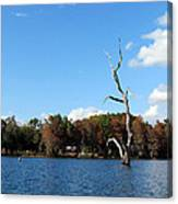 Lake Rousseau Canvas Print