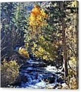 Lake Sabrina Creek Canvas Print