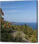 Lake Superior Palisades 2 Canvas Print