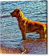 Lake Superior Puppy Canvas Print