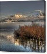 Lake With Pampas Grass Canvas Print