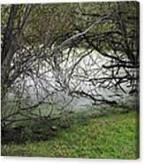 Lakeside View 1 Canvas Print