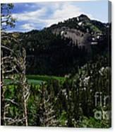 Landscape - Carson Pass 1 Canvas Print