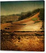 Landscape #20. Winding Hill Canvas Print