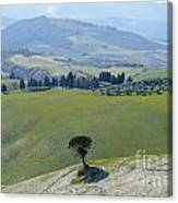 Landscape View Canvas Print