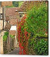 Lane And Ivy In St Cirq Lapopie France Canvas Print