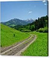 Lane View Of Crazy Mountains Canvas Print