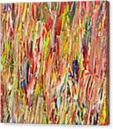 Large Acrylic Color Study 2012 Canvas Print