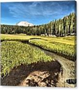Lassen Meadows Canvas Print