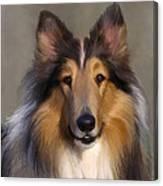 Lassie Come Home Canvas Print