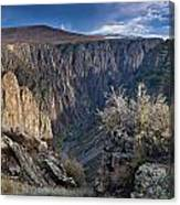 Late Afternoon At Black Canyon Of The Gunnison Canvas Print