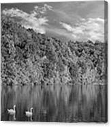 Late Afternoon At The Lake - Bw Canvas Print