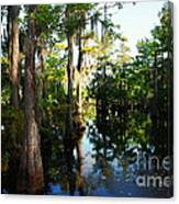 Late Afternoon At The Swamp Canvas Print