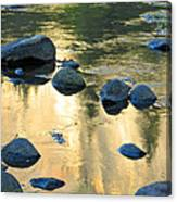 Late Afternoon Reflections In Merced River In Yosemite Valley Canvas Print