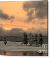 Late Spring Storm In Yellowstone Canvas Print