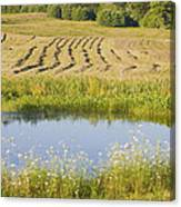Late Summer Hay Being Harvested In Maine Canvas Poster Print Canvas Print