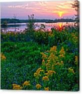 Late Summer Lake Canvas Print