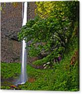Latourell Falls Oregon - Posterized Canvas Print