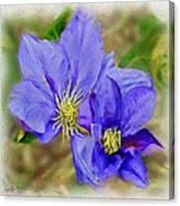 Lavendar Blue Canvas Print