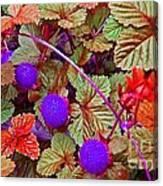 Lavender Berry Canvas Print
