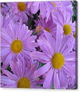 Lavender Mum Bouquets Canvas Print