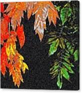 Lavish Leaves 5 Canvas Print