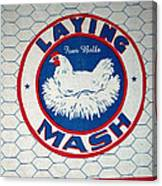 Laying Mash Canvas Print