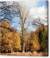 Lazienki Park Autumn Scenery Canvas Print