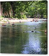 Lazy Summer Days Canvas Print