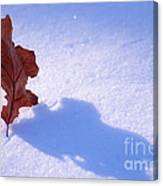 Leaf Dance Canvas Print