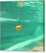 Leaf Floating Under The Water Canvas Print
