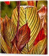 Leaf Lines Canvas Print