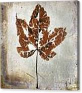 Leaf  With Textured Effect Canvas Print