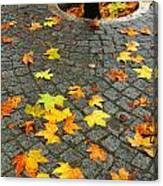 Leafs In Ground Canvas Print