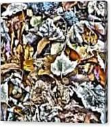 Leaves 02 Canvas Print