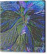 Leaves Of Blue Canvas Print