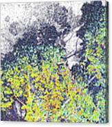 Leaves On A Tree Canvas Print