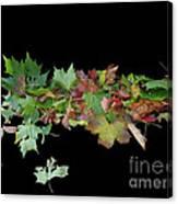 Leaves On Sidewalk Canvas Print