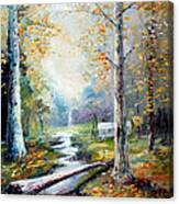 Leaving The Woodland Creek  Canvas Print