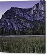 Leidig Meadow Canvas Print