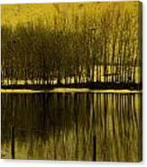 Lemon Lake Canvas Print