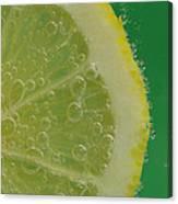 Lemon Slice Soda 1 Canvas Print