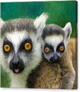Lemurs Canvas Print