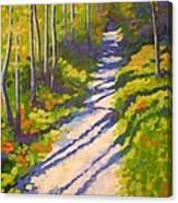 Lena Lake Trail 3 Canvas Print